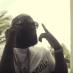 "Rick Ross Feat. Scrilla ""Triple Platinum"" Video"