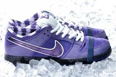 """Concepts x Nike SB Dunk Low """"Purple Lobster"""" Revealed: Release Details"""