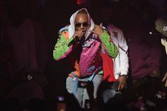 Cam'ron Questions Existence Of Dinosaurs, Doesn't Believe Bones In Museums Are Real