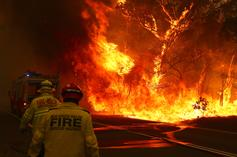 Nude Model Helps Raise $1Mill For Australian Fire Relief By Offering Naked Pictures