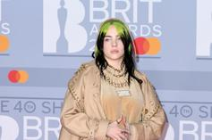 Billie Eilish Livid After Puppy Destroys Rare Sneaker Collection
