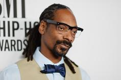 Snoop Dogg Calls The NBA & NFL Racist For Lack Of Black Team Owners