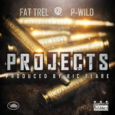 FAT TREL - Projects Feat. P-Wild