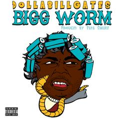 DOLLABILLGATES - BiGG WORM