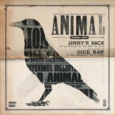 Dice Raw - Animal