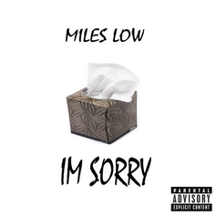 Miles Low - I'm Sorry Feat. Noize & Kel