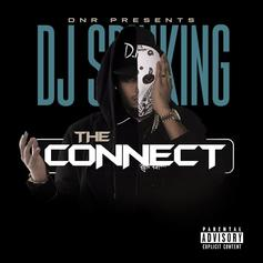 DJ SpinKing - The Connect