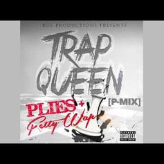 Plies - Trap Queen (Freestyle)