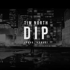 Tim North - Dip