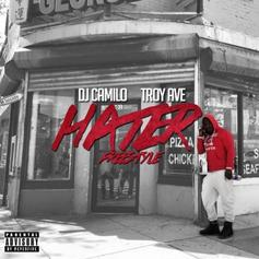 Troy Ave - Hater (Freestyle)