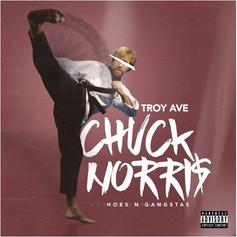 Troy Ave - Chuck Norris (Hoes & The Gangstas)