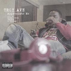 Troy Ave - Appreciate Me