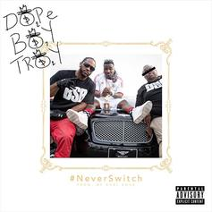 Troy Ave - Never Switch