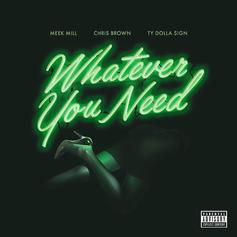 Meek Mill - Whatever You Need Feat. Chris Brown & Ty Dolla $ign