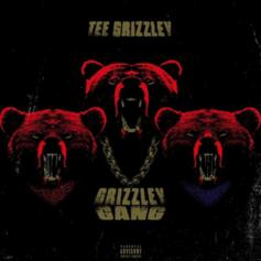 """Tee Grizzley Drops Off """"Grizzley Gang"""""""