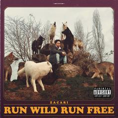 "Zacari Plants His TDE Flag On ""Run Wild Run Free"""