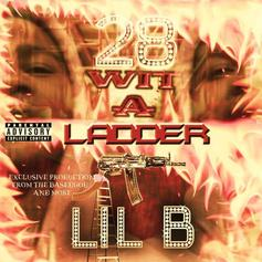 "Lil B Drops 42-Track Project ""28 Wit A Ladder"""