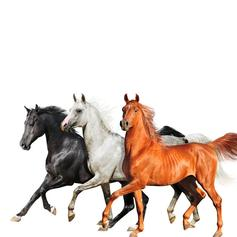 """Lil Nas X Reveals Latest """"Old Town Road"""" Remix With Diplo"""