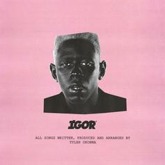 """Tyler, The Creator Delivers A Fire Album With """"IGOR"""""""