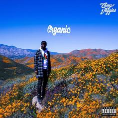 "Casey Veggies Weighs In On Thug Love With The Sweet Track ""Candy"""