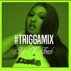 "Trey Songz Flips Megan Thee Stallion's ""Big Ole Freak"" For Latest Triggamix"