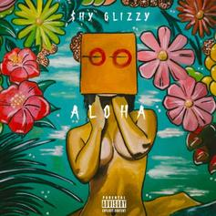 "Shy Glizzy Floats On ""Aloha"" EP Standout, ""Profanity"""