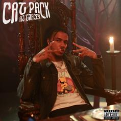 "AJ Tracey Drops Off Brand New Banger ""Cat Pack"""