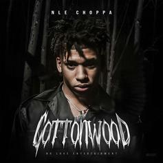 """NLE Choppa Drops Debut EP """"Cottonwood"""" Ft. Blueface"""