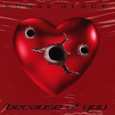 "Kodak Black Finds Love On New Track ""Because Of You"""