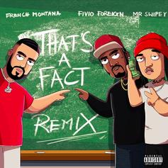 "French Montana & Fivio Foreign Squash Their Beef With ""That's A Fact (Remix)"" Feat. Mr. Swipey"