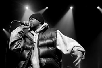 "Full Album Stream For Ghostface Killah & Adrian Younge's ""12 Reasons To Die"""