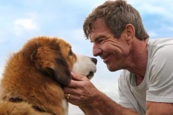 """""""A Dog's Purpose"""" Premiere Cancelled After Leak Of Animal Abuse Footage"""