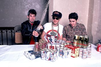 The Beastie Boys Memoir Is Officially Dropping This Fall