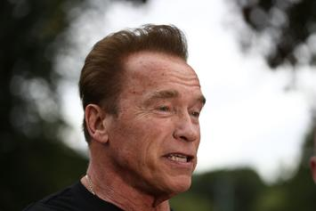 "Arnold Schwarzenegger Calls Trump A ""Little Wet Noodle"" After Putin Conference"