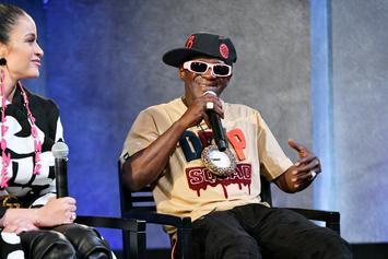 Flavor Flav Named In Paternity Suit; Woman Claims He Fathered Her Baby