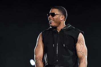 Nelly Gets Pulled Off Stage By Fan While Shaking Hands: Watch